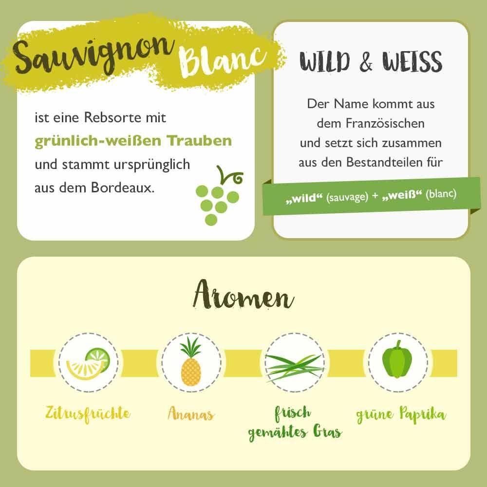 Vinexus Magazin Sauvignon Blanc Day Fun Facts
