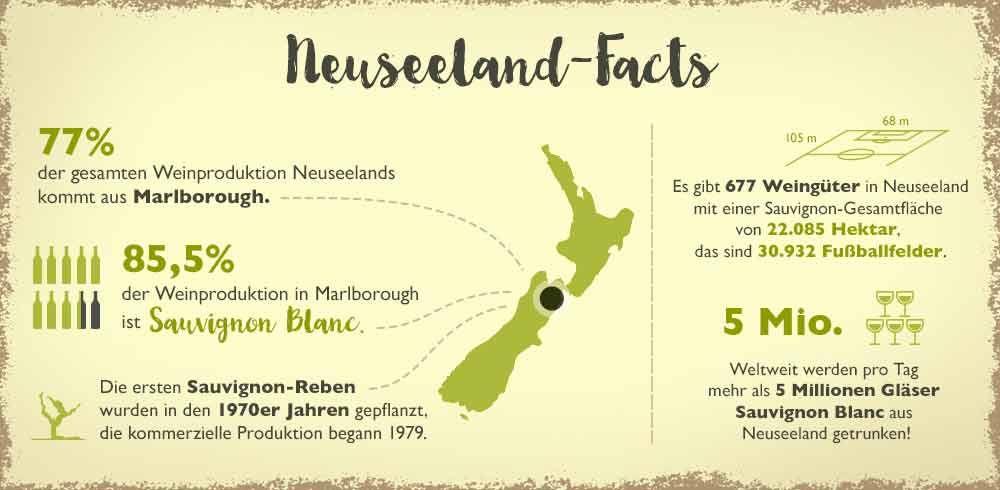 Vinexus Magazin Sauvignon Blanc Day Neuseeland Facts