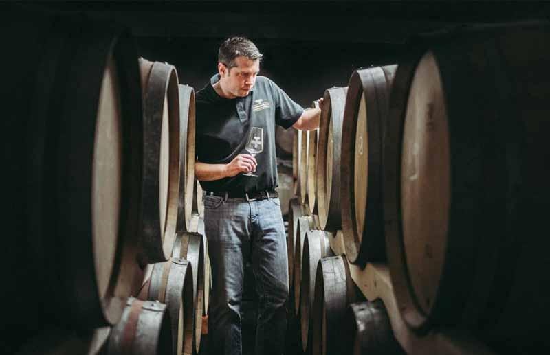 Vinexus Schwarzwald Weinfässer